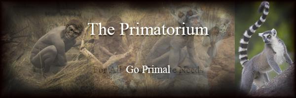 The Primatorium